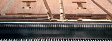 Railsticks // WLS_08_M_1SNOQLC